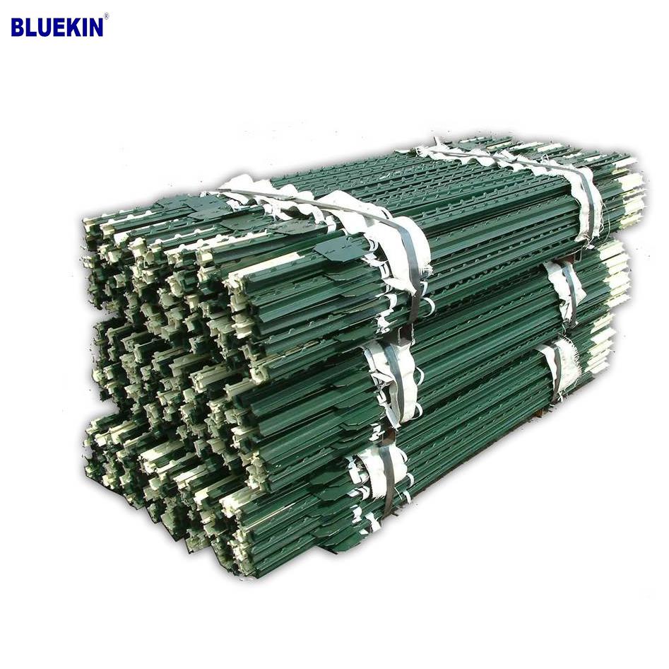 Bluekin Array image48