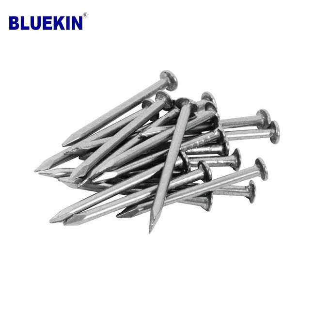 Bluekin Array image9