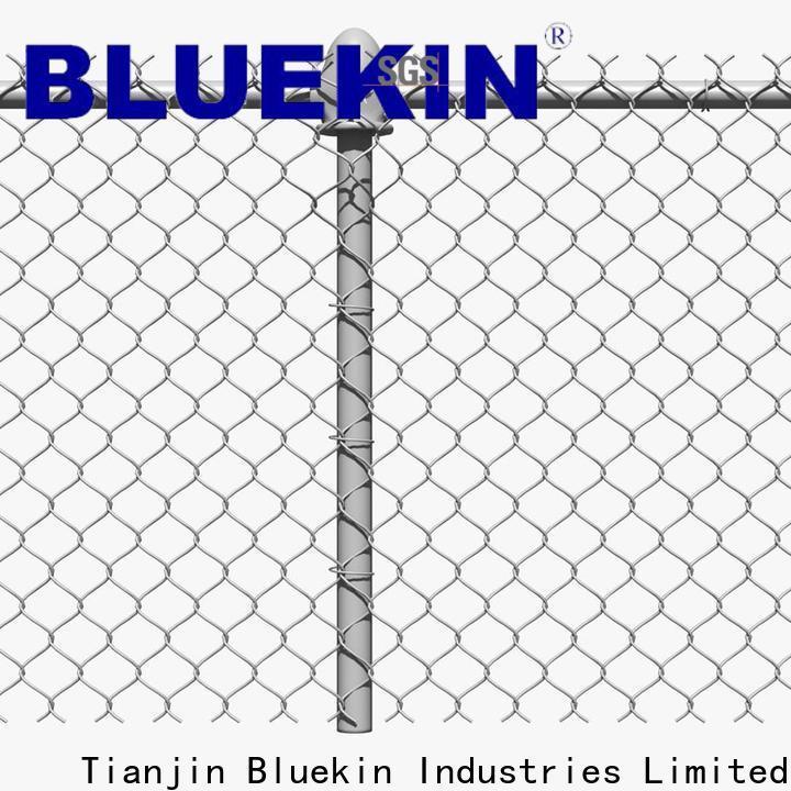 Bluekin hot dipped galvanized wire mesh DIY factory