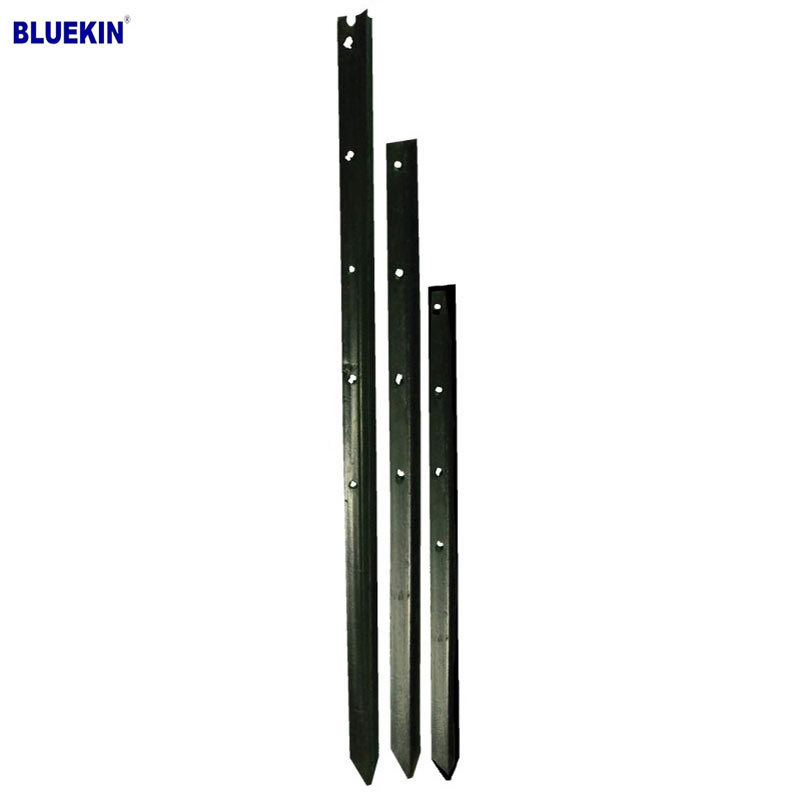 Bluekin Array image40