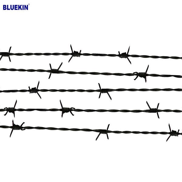 Bluekin Array image39