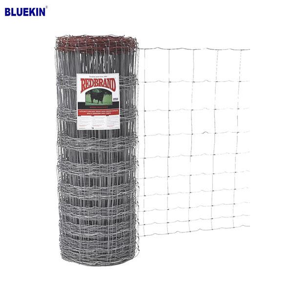 Bluekin Array image105