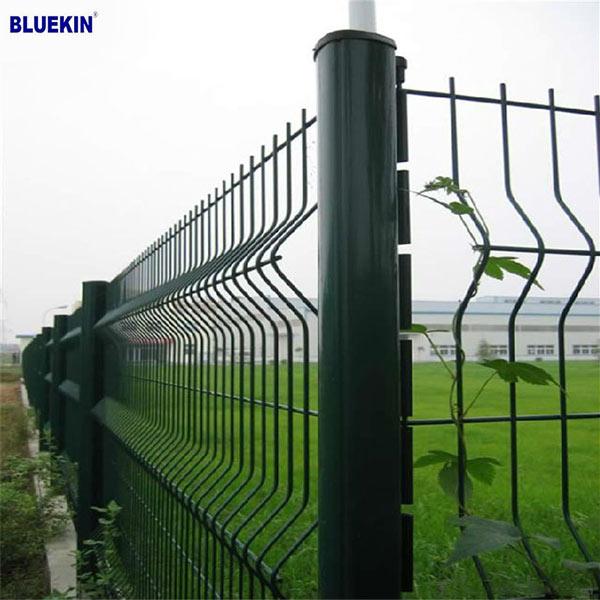 Bluekin Array image115