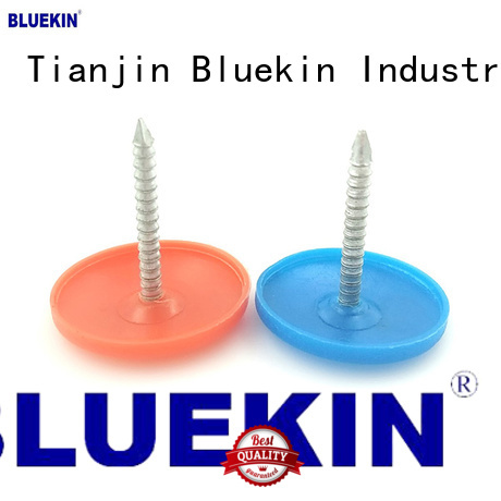Bluekin wire nails overseas market