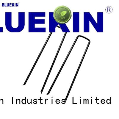 Bluekin quality wrought nails marketing factory