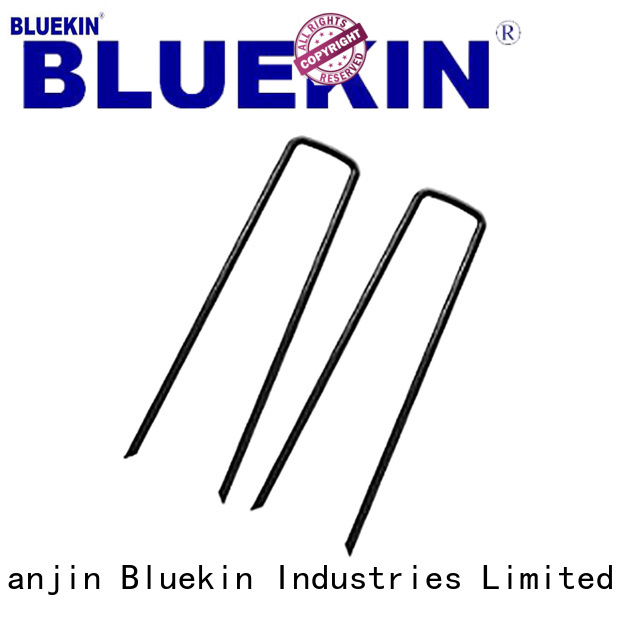 Bluekin coil roofing nail marketing garden